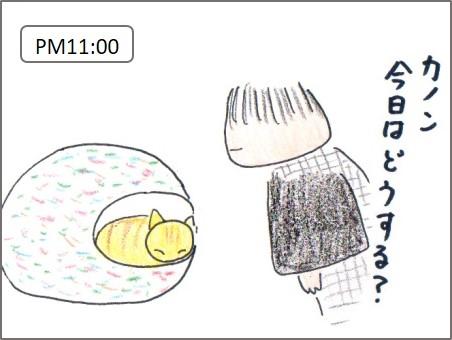 f:id:chai-ko:20161109220843j:plain