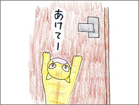 f:id:chai-ko:20161109220851j:plain