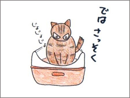 f:id:chai-ko:20161114215220j:plain