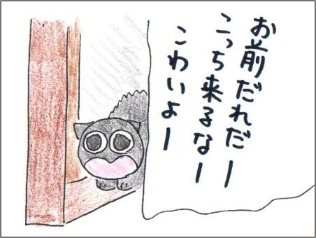 f:id:chai-ko:20161115222500j:plain