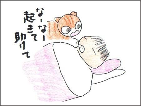 f:id:chai-ko:20161120202225j:plain