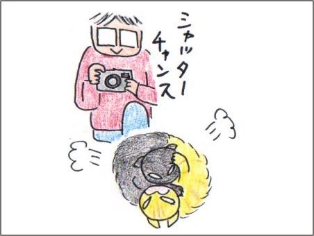 f:id:chai-ko:20161127150356j:plain