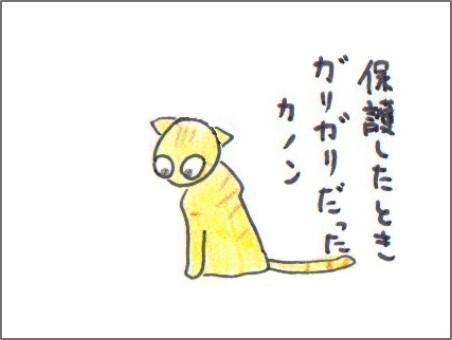 f:id:chai-ko:20161213201315j:plain