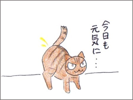 f:id:chai-ko:20161220194931j:plain