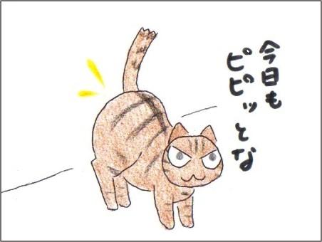 f:id:chai-ko:20170102200801j:plain