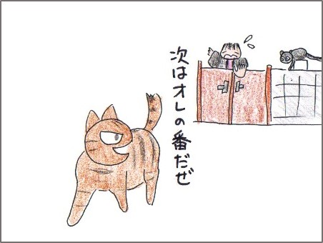 f:id:chai-ko:20170109145300j:plain