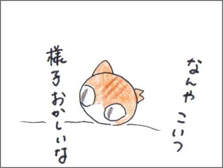 f:id:chai-ko:20170117172041j:plain