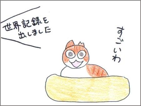 f:id:chai-ko:20170131223200j:plain