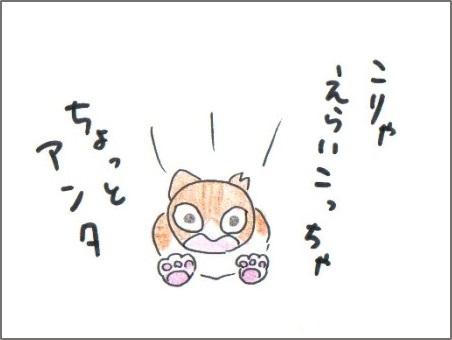 f:id:chai-ko:20170211130256j:plain