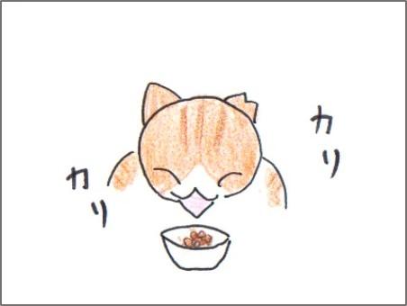 f:id:chai-ko:20170225205827j:plain