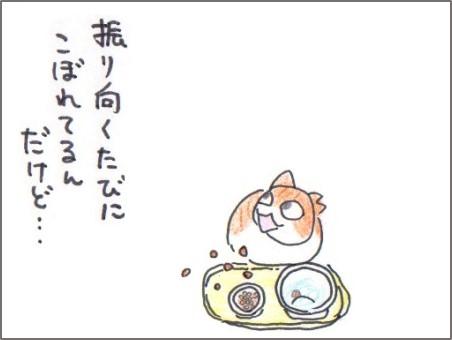 f:id:chai-ko:20170225205834j:plain