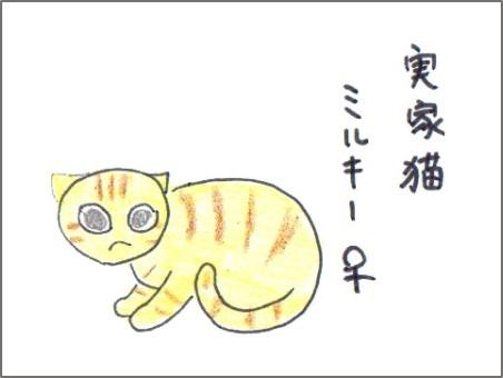 f:id:chai-ko:20170228200044j:plain