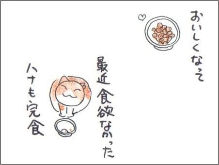 f:id:chai-ko:20170302213517j:plain