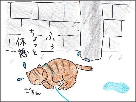 f:id:chai-ko:20170408171203j:plain