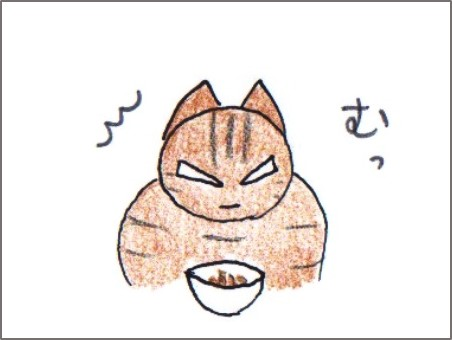 f:id:chai-ko:20170418194812j:plain