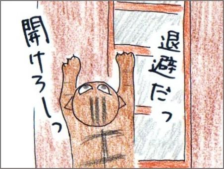 f:id:chai-ko:20170504190524j:plain