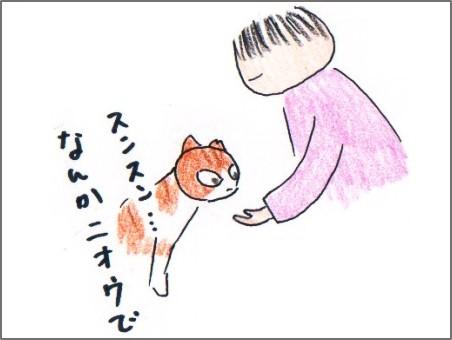 f:id:chai-ko:20170513210515j:plain