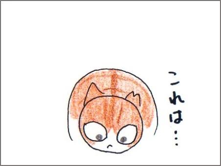 f:id:chai-ko:20170513210518j:plain