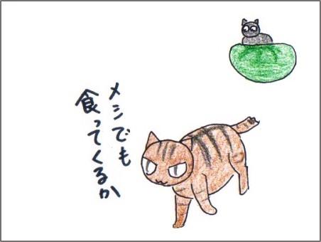 f:id:chai-ko:20170514212341j:plain