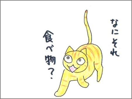 f:id:chai-ko:20170515221023j:plain