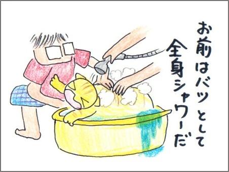 f:id:chai-ko:20170520162010j:plain