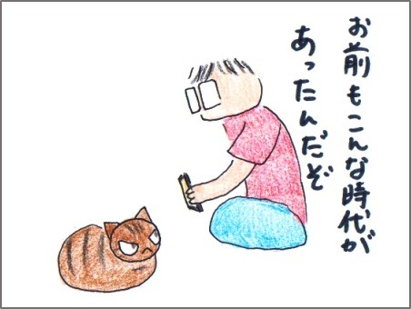 f:id:chai-ko:20170526210146j:plain