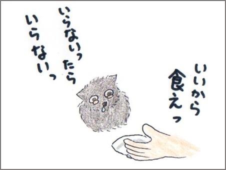 f:id:chai-ko:20170528202943j:plain