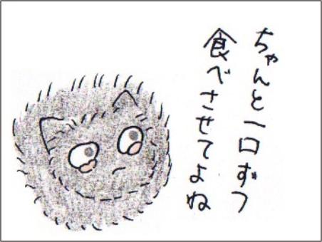 f:id:chai-ko:20170528221456j:plain