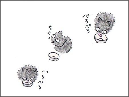 f:id:chai-ko:20170601164748j:plain
