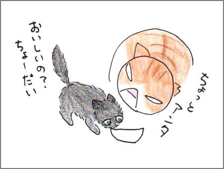f:id:chai-ko:20170608200602j:plain
