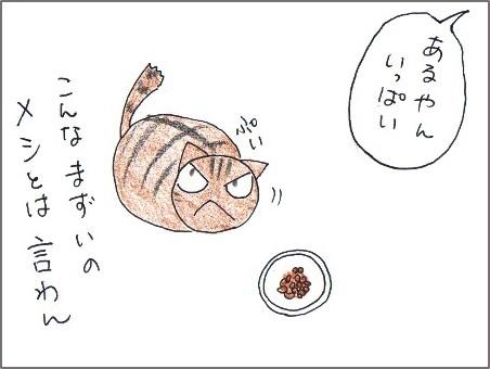 f:id:chai-ko:20170609200450j:plain