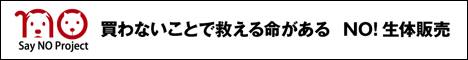 f:id:chai-ko:20170614202739j:plain