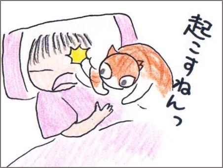 f:id:chai-ko:20170708135802j:plain