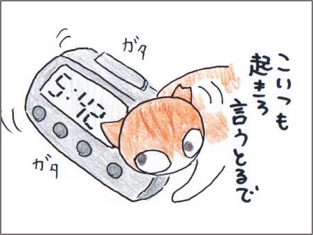 f:id:chai-ko:20170708135807j:plain