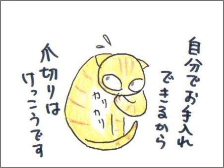 f:id:chai-ko:20170712195924j:plain