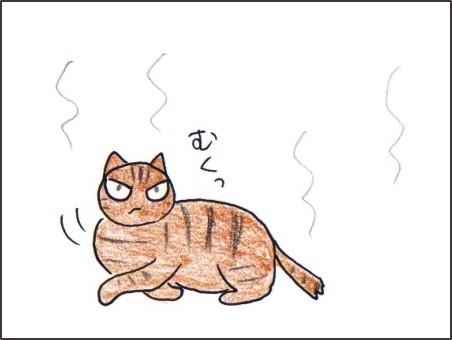 f:id:chai-ko:20170716194651j:plain