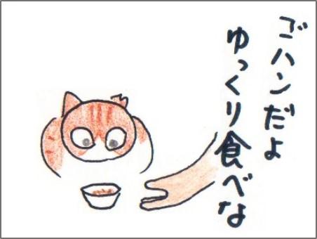 f:id:chai-ko:20170725192609j:plain