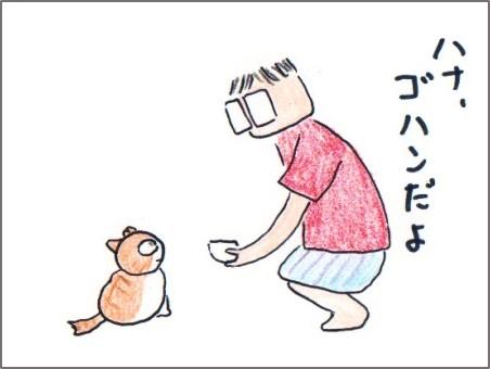 f:id:chai-ko:20170726193501j:plain