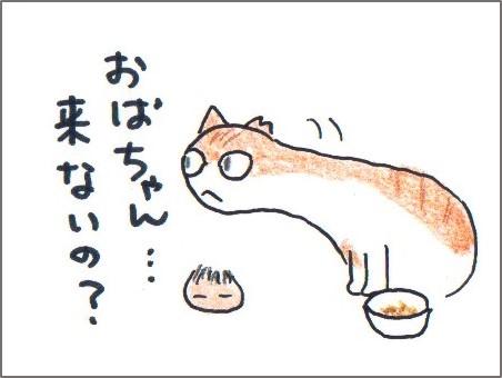 f:id:chai-ko:20170726193515j:plain