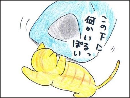 f:id:chai-ko:20170815215804j:plain