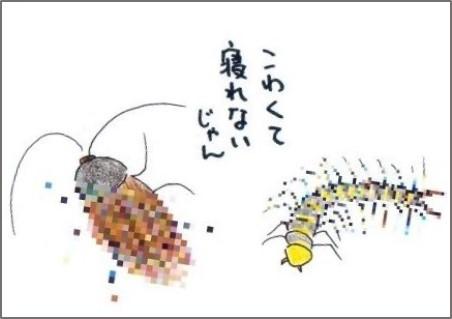 f:id:chai-ko:20170815215817j:plain