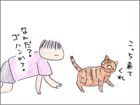 f:id:chai-ko:20170912222250j:plain
