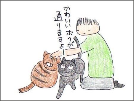 f:id:chai-ko:20170914221541j:plain