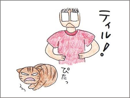 f:id:chai-ko:20171011192503j:plain