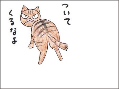 f:id:chai-ko:20171019212759j:plain
