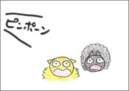 f:id:chai-ko:20171205205057j:plain