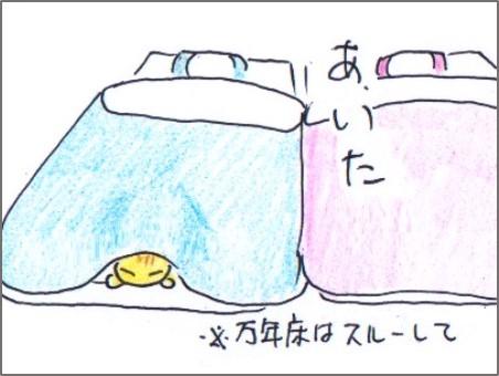 f:id:chai-ko:20171231170217j:plain