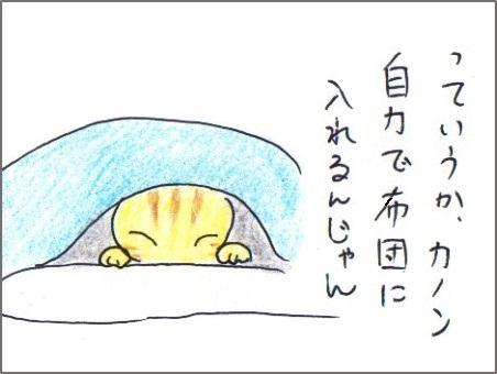 f:id:chai-ko:20171231170740j:plain