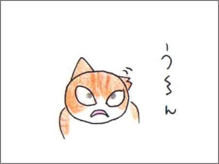 f:id:chai-ko:20180118204745j:plain