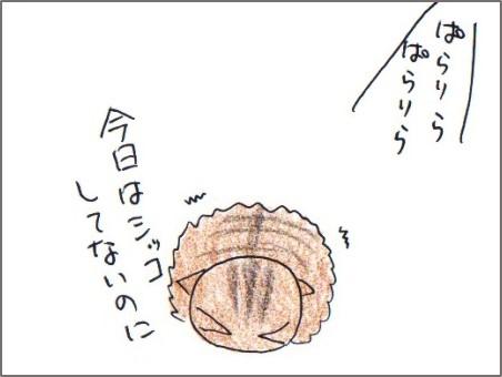 f:id:chai-ko:20180208202522j:plain